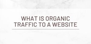 What is Organic Traffic to a Website